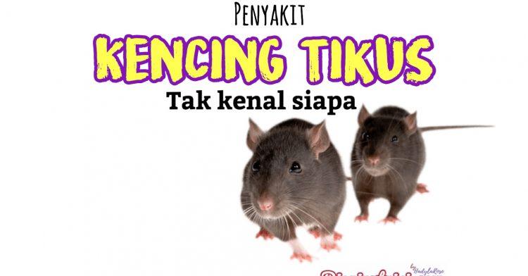 Ketahui Cara Atasi Penyakit Kencing Tikus